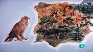 hyt fauna iberica