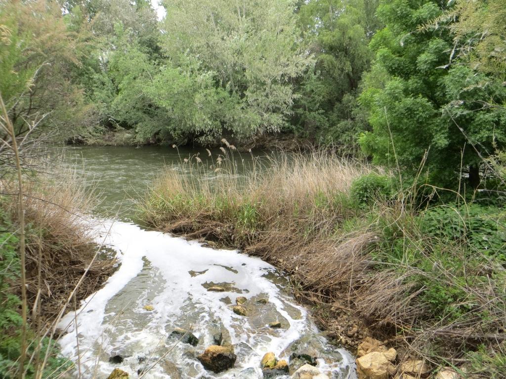 Planes de gestión del agua. Servicios- Aguas. PERSEA Soluciones Ambientales S.L.