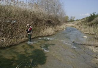 Vigilancia ambiental de un colector de la EDAR de Burgos