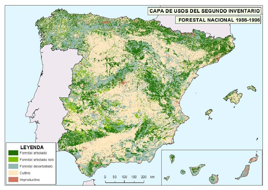 Gestion De Recursos Forestales En Espana