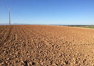 Estudio de afecciones a Red Natura 2000, para un parque solar fotovoltaico en la provincia de Toledo.